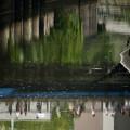 写真: 小石川後楽園へ