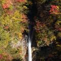 写真: 駒止の滝