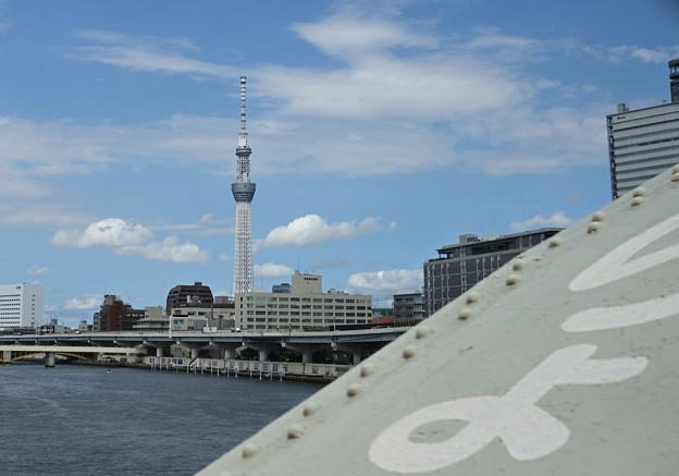 隅田川橋梁を渡る