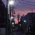 Photos: 黎明から