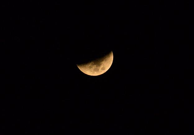 月齢6.3
