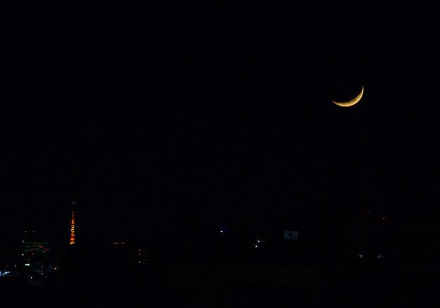 お月様と東京タワー