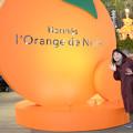 Photos: オレンジ色