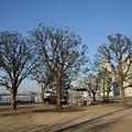 Photos: ぐるり公園