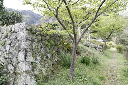 小島陣屋(静岡市清水区) - 05