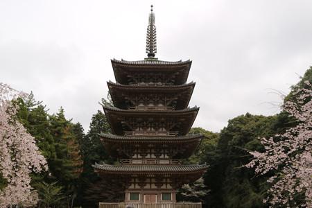 醍醐寺 (15)