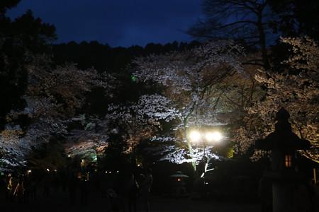 三井寺(園城寺) (7)