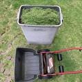 芝刈り190822