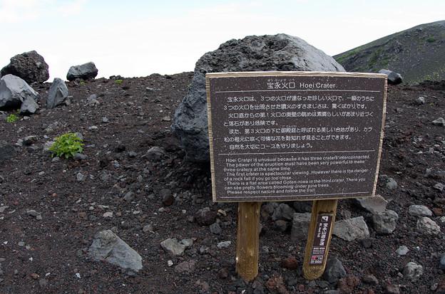 プチ富士登山6