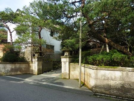 5、寺町〜犀川の桜