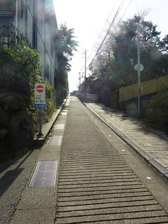 9、寺町〜犀川の桜