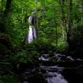 Photos: 雲井の滝