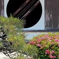 Photos: 円窓