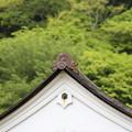Photos: 国宝閑谷学校