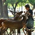 Photos: 奈良公園 201808-5