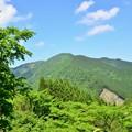 Photos: 十津川村にて-5