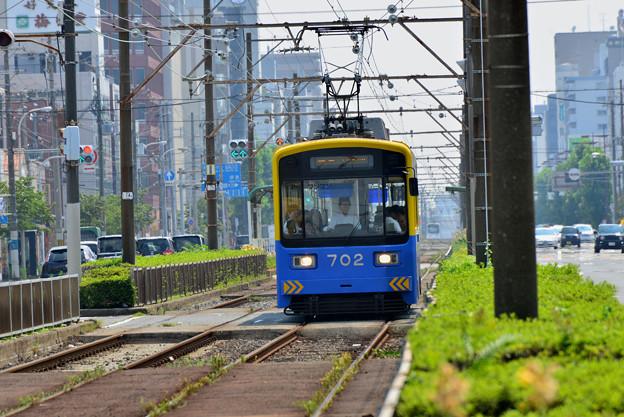 Romen Densha Hankai Tramway-6 堺市内