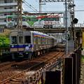 Photos: Romen Densha Hankai Tramway-19 神の木
