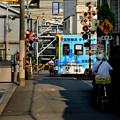 Photos: Romen Densha Hankai Tramway-25 松虫