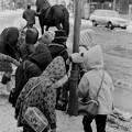 函館の子供たち 1969-#1