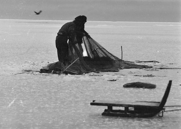 氷下魚漁 風連湖 1969-#1