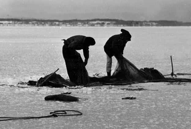 氷下魚漁 風連湖 1969-#2