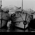 函館漁港 1969