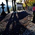 野迫川村立里荒神社の朝