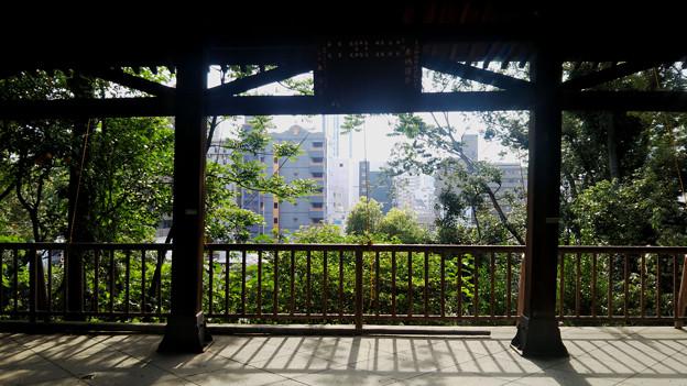 大阪 坂の町#24 大江神社 舞台