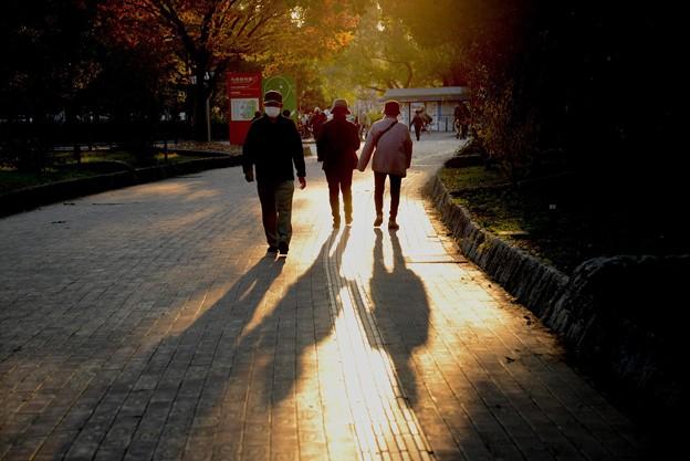 長居公園の晩秋#1