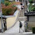 Photos: 源聖寺坂 時速30km