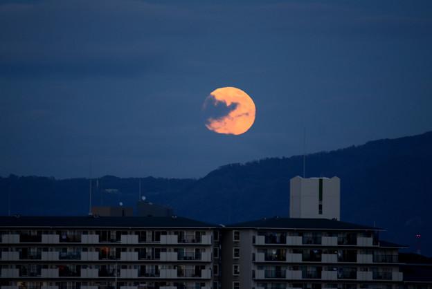 20201130 Beaver Moon#1