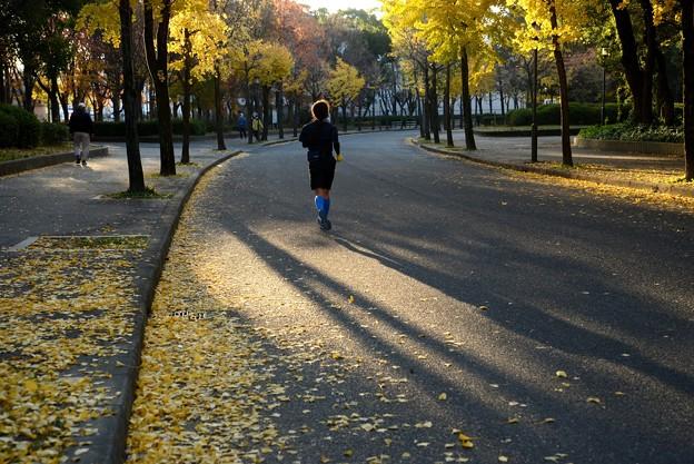 秋を走る人