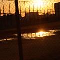 金網越しの夕日