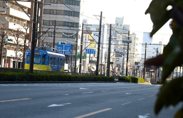 路面電車の通る風景