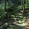 写真: 三木峠