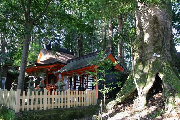 熊野古道中辺路1