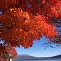 Photos: 紅葉越しの湖