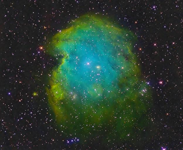 カラフルモンキー NGC2174