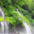 IMGP8778 吐竜の滝