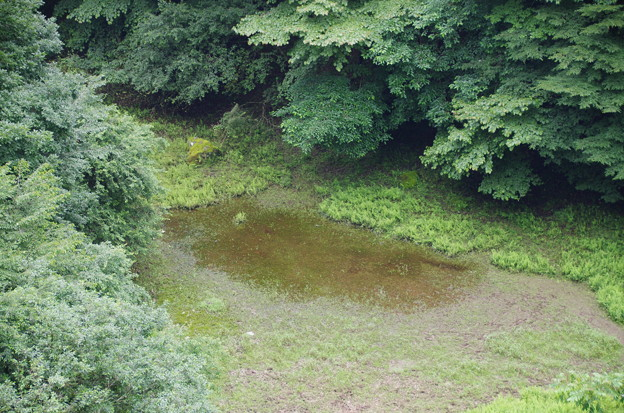 赤池~幻の湖~
