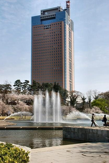 噴水と櫻と県庁舎-2-024