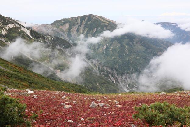 [2020年9月22日]白馬岳4