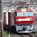 Photos: 金太郎63号機牽引高速貨物3058レ小山通過!