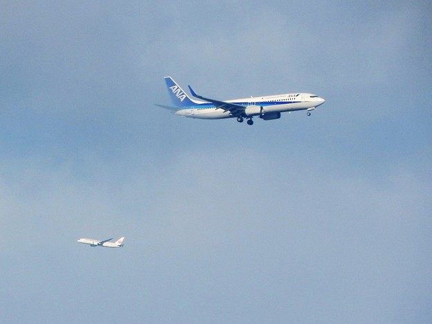 Photos: お台場前を行き交う離着陸機