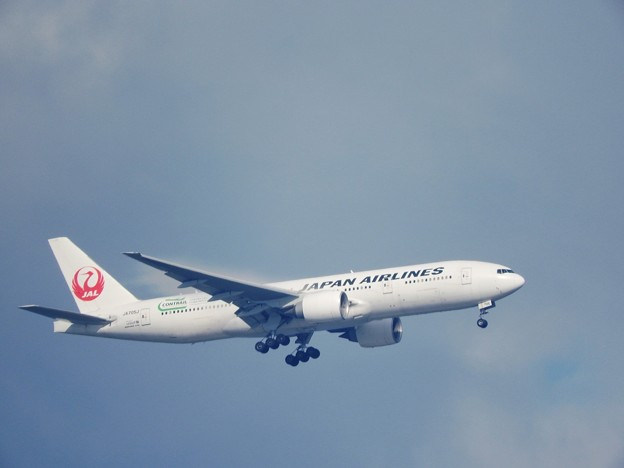 Photos: Boeing777-246ER 日本航空JA705J