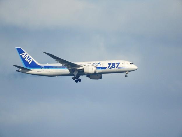 Photos: Boeing 787-8 Dreamliner 全日空JA812A