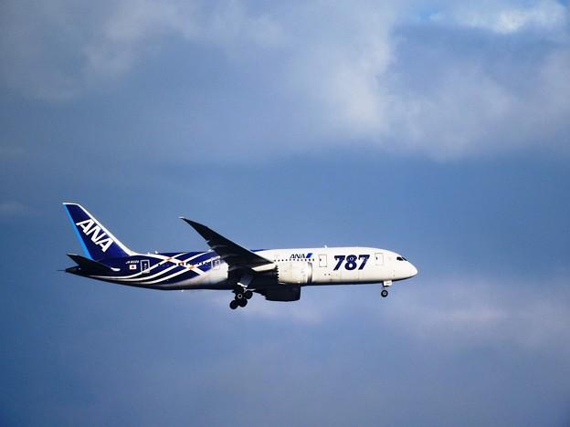 Photos: Boeing 787-8 Dreamliner 全日空JA802A