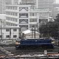 Photos: 雪の田端運転所