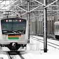 Photos: 雪の宇都宮線